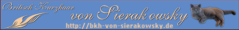 www.bkh-von-sierakowsky.de
